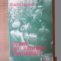EVREII SUB REGIMUL ANTONESCU de RADU IOANID - Istorie