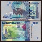 UGANDA. 2000 SHILLINGS 2010. AUNC.