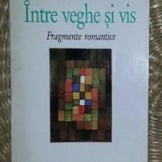 Intre veghe si vis : fragmente romantice / Novalis - Filosofie