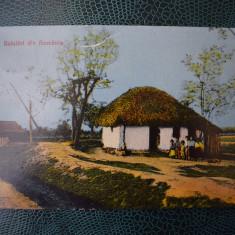AKVDE18 - Carte postala - Salutari din Romania - Sat taranesc - Carte Postala Banat dupa 1918, Circulata, Printata