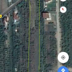 Teren intravilan Păulești Cocoşeşti Prahova - Teren de vanzare, 6100 mp