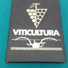 VITICULTURA /T. MARTIN / 1966