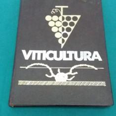 VITICULTURA /T. MARTIN / 1966 - Carti Agronomie