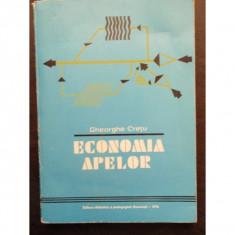 ECONOMIA APELOR - GHEORGHE CRETU - Carte Management