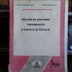 Notiuni de anatomie topografica a capului si agatului
