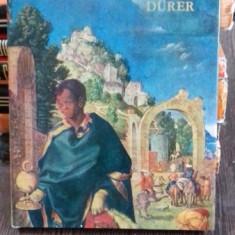 DURER PICTORUL - VIORICA GUY MARICA