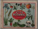 Atlas botanic cu 170 ilustratii colorate