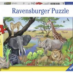Puzzle animale safari, 60 piese - VV25357, Ravensburger