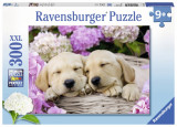Puzzle Catei in Patura, 300 piese - VV25387, Ravensburger