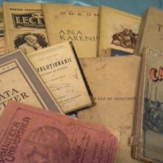 DIAVOLUL/MUERUSCA/SONATA /CAZACII/UN CAZ DE CONSTIINTA/+5 CARTI DE LEV TOLSTOI
