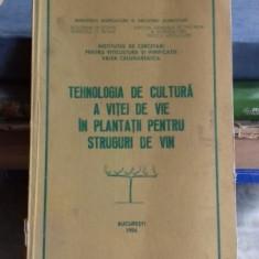 TEHNOLOGIA DE CULTURA A VITEI DE VIE IN PLANTATII PENTRU STRUGURI DE VIN
