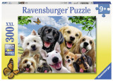 Puzzle Cateii Incantati, 300 piese - VV25385, Ravensburger