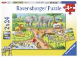 Puzzle zi la zoo, 2x24 piese - VV25338, Ravensburger