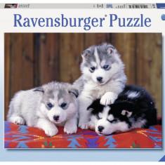 Puzzle Pui de Huskie, 200 piese - VV25378