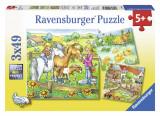 Puzzle animale de curte, 3x49 piese - VV25353, Ravensburger