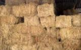 Baloți lucernă dreptunghiulari 2018