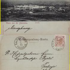 Zuczka ( Bucovina)- editura Leon Konig , Cernauti-clasica, RR, Circulata, Printata