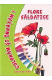 Flori salbatice - Coloram si invatam!