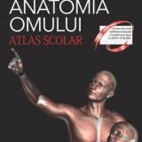 Anatomia omului. Atlas scolar., corint
