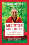 Meditation Saved My Life: A Tibetan Lama and the Healing Power of the Mind, Paperback