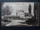 SEBES - SEBESUL SASESC - BAIA DE SARE - PERIOADA INTERBELICA, Circulata, Fotografie