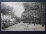 FAGARAS - PARCUL REGINA MARIA - INCEPUT DE 1900, Circulata, Fotografie
