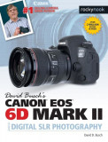 David Busch's Canon EOS 6d Mark II Guide to Digital Slr Photography, Paperback