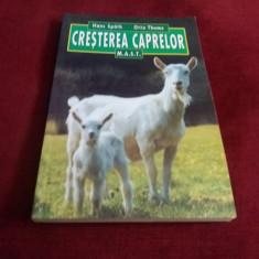 LOTTE HANREICH - BRANZETURI PENTRU CASA SI PIATA