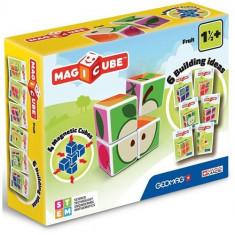 Set Constructie Magnetic Magicube Fructe - VV25543