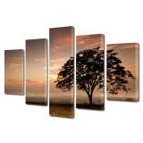 Set Tablouri Multicanvas 5 Piese Peisaje Coroana de copac