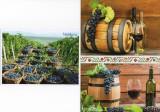 Moldova 2018, Struguri, Vin, Vinarie, carte postala