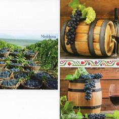 Moldova 2018, Struguri, Vin, Vinarie, carte postala, Necirculata, Printata