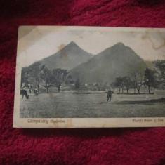 Cp campulung bucovina muntii adam si eva album, Campulung Moldovenesc, Necirculata, Printata
