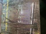 Vinil - Melodii de Horia Moculescu