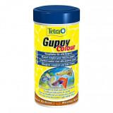 Tetra Guppy Color 250 ml/Tetra Guppy Colour 250 ml - PP00369