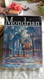 MONDRIAN - VICTOR IERONIM STOICHITA