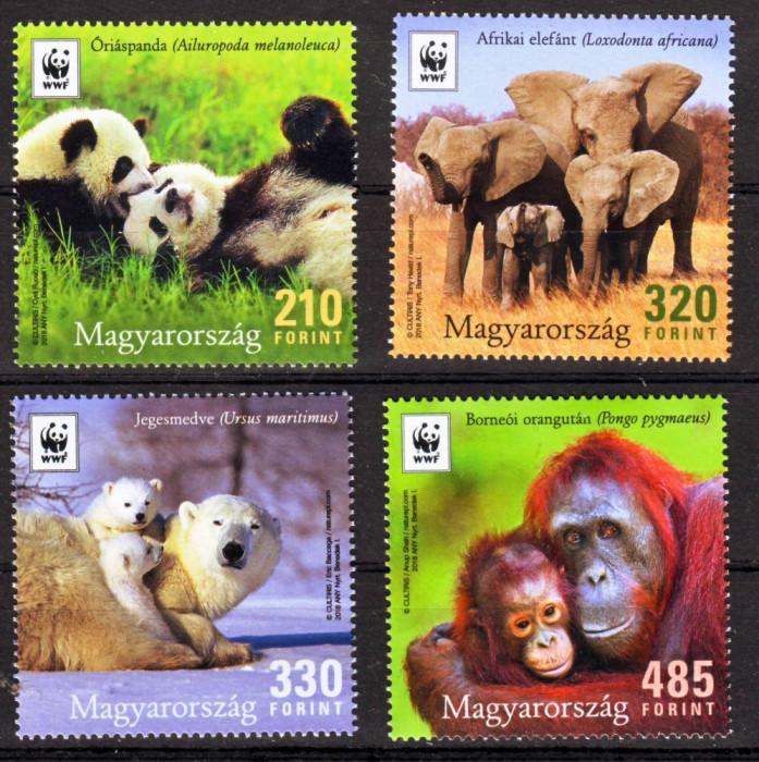 UNGARIA 2018 WWF ANIMALE PROTEJATE ELEFANT,PANDA,ORANGUTAN
