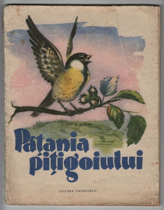 Eugen B. Marian - Patania pitigoiului (ilustratii Dem) foto mare