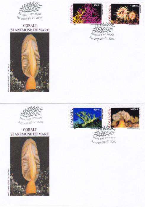 ROMANIA 2002  LP 1577  CORALI SI ANEMONE DE MARE  FDC