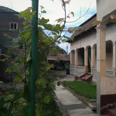 Două case la preț de una cu peste 140mp foto