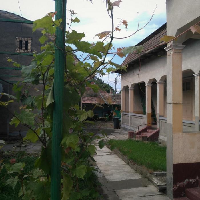 Două case la preț de una cu peste 140mp foto mare