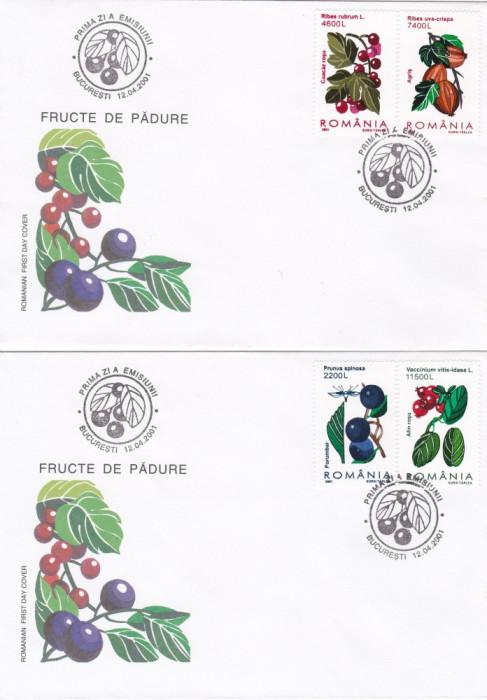 ROMANIA 2001  LP 1547  FRUCTE  DE PADURE  FDC