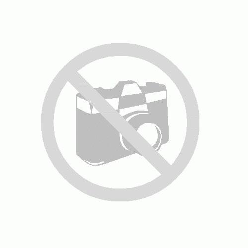 DEWEY - PISOIUL DIN BIBLIOTECA UNUI MIC ORAS CUCERESTE LUMEA de VICKI MYRON , in colaboarare cu BRET WITTER , 2012 foto mare