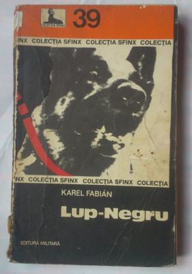 (C379) KAREL FABIAN - LUP-NEGRU foto
