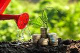 Un viitor mai sigur cu investițiile Omnia Tech! 50% profit anual!