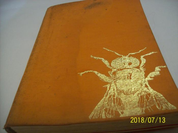 cresterea albinelor- 1965