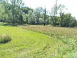 Vând pământ de 1 hectar, Teren extravilan