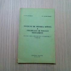 NOTIUNI DE ISTORIE SFINTA A VECHIULUI SI NOULUI TESTAMENT - Ene Braniste - 1991, Alta editura