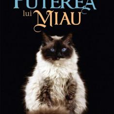 Pisica lui Dalai Lama si puterea lui miau (eBook)