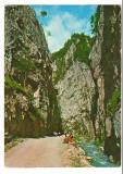 CPI B 10671 CARTE POSTALA - JUD. ARGES. CHEILE DAMBOVICIOAREI, Circulata, Fotografie